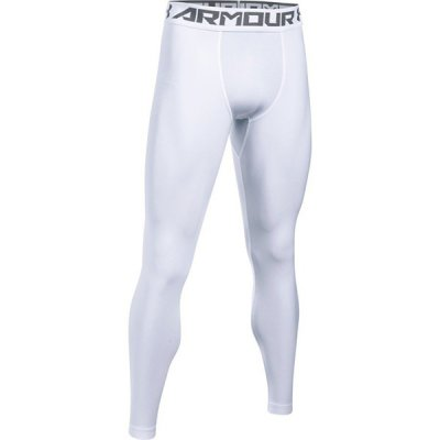UA HG Armour 2.0 Legging
