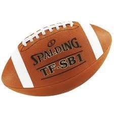 Spalding TF-SB1- Bőr labda